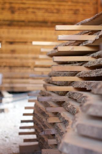 Holzlager mit 30 Holzarten