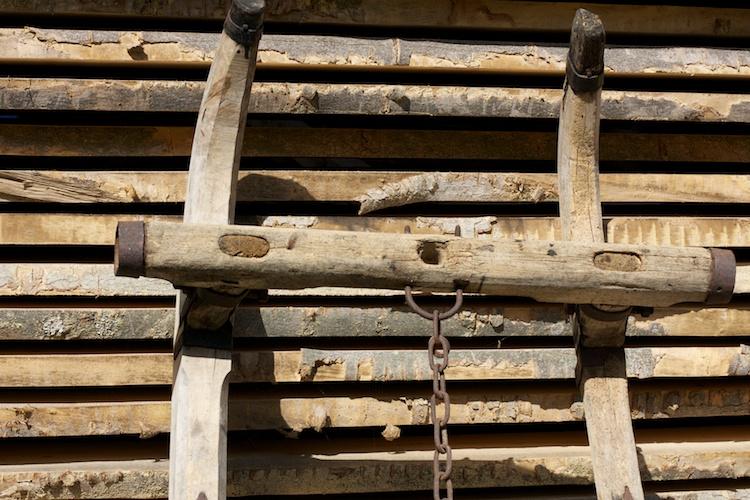 Holz aus Bayern, nachhaltig